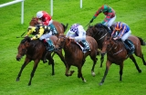 MOBSTA WINS THE WEATHERBYS IRELAND GREENLANDS STAKES (GROUP 2) - 21st May 2016 - A thrilling victory at the Curragh for MOBSTA who emerged as a Group horse in determined fashion under Pat Smullen